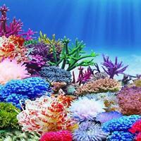 Aquarium Ocean Background Landscape Poster Fish Tank Decor Painting Backgro J1P2