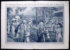 La società scena London Zoo Reggenti Park TIGER Fortunino Matania antica stampa 1911