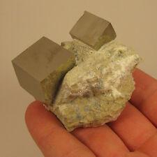PYRITE CUBE Crystals on Matrix Rock - Navajun, Spain