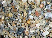 Jurassic Foraminifera ostracod microfossil matrix sample Oxford Clay sinemurian