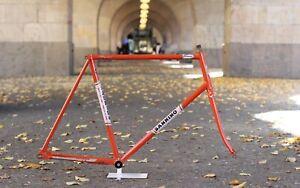 Sannino Pista Frame Red Mannesmann Oria / 56 cm / 2.819g / Campagnolo Track Bahn
