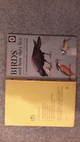 Ladybird book Birds and How They Live (Natural History) by Richard Bowood