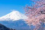 Happiness Japan