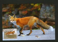 SERBIA-MC-FAUNA-WILD ANIMALS-FOX-2014.