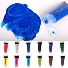 FP- Pro Tube Acrylic Paint Studio Nail Glass Wall Art Painting Artist Supplies C