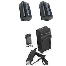 2 Batteries + Charger for Sony HDR-PJ200E HDR-TD20E HDR-TD20VE HDR-TD30 NEX-VG30
