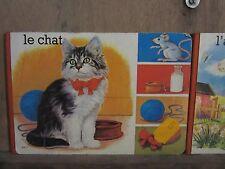 Le chat/ Lito Interco Paris