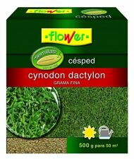 Flower 10796 - semilla Cynodon Dactilon 500 G