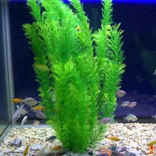 Artificial Fake Plastic Water Grass Plants for Fish Tank Aquarium Ornament Decor