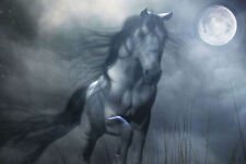 Framed Print - Horse Running in the Misty Moonlight (Picture Poster Gothic Art)