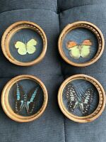 Vintage Butterfly Bamboo Coaster Set of 4
