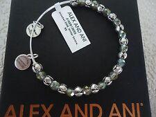 Silver Bangle New Tag Card & Box Alex and Ani Winter Solace Snowbell Rafaelian