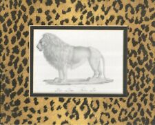Leopard Matting 10 x 8 with Lion Print