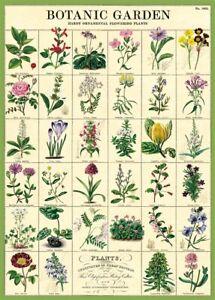 Botanic Garden Plants Chart Poster Wrap 50 x 70cm - Cavallini & Co - 22 Designs!