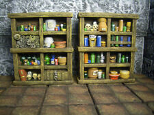 Alchemist's Shelves Thomarillion Unpainted Resin Dwarven Forge D&D