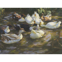Koester Ducks Pond Birds Nature Painting Canvas Art Print Poster