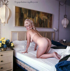 Bunny Yeager 60s Color Transparency Nude Figure Model Sherry De Voe Cheeky Pose