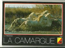 La Provence La Camargue Postcard with White Horses Cancelled Stamp 1988