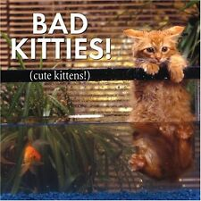 Bad Kitties Cute Kittens