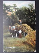 Country Scene SHIRE HORSE Pitching The Hay LOADING UP c1906 by Wildt & Kray 704