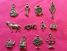 Tibetan Silver Beauty and the Beast Themed Mixed Charms 12 per pack