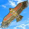 NEW 59-Inch Eagle bird Kite single line Outdoor fun Sports Children's toys