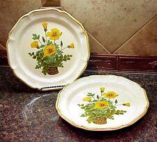 Vintage Mikasa Garden Club Dinner Plates Petunias Stoneware  Set of Two Nice