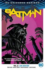 Batman V2 I Am Suicide TP - by King & Janin - DC Rebirth Dark Knight Robin