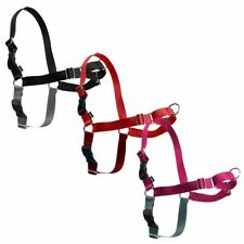 EASY WALK HARNESS INCLUDES A 1.8 METRE LEAD  (Non Pull) FULLY ADJUSTABLE HARNESS
