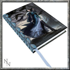 EMBOSSED JOURNAL RAVEN FAIRY Anna Steinbauer NEMESIS BLANK PAGES NEW BOOK