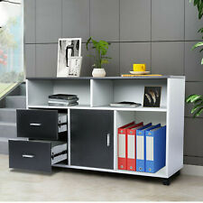 File Cabinet 2 Drawer Wood Mobile Lateral Filing Cabinet Printer Stand With Wheels