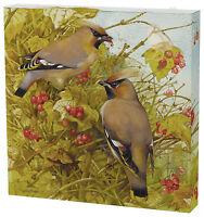 Marjolein Bastin  Autumn Camouflage 12 x 12 Gallery Wrapped Canvas