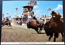 CANADA ALBERTA - POSTCARD - CALGARY EXHIBITION & STAMPEDE - BUFFALO RIDERS