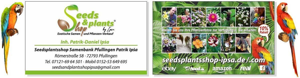 Seeds Plants Shop - Ipsa