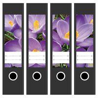 4  Ordner-Etiketten Rücken Sticker Ordnerrücken Motiv Krokus breit kurz