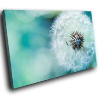 SC191 White Green Dandelion Flower Landscape Canvas Wall Art Large Picture Print