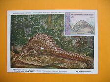 Card Maximum Laos- Carte Maximum Laos- Tricuspis - Pangolin Animaux