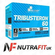 OLIMP TRIBUSTERON 60 testosterone booster tribulus terrestris