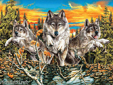 Jigsaw puzzle Animal Wild Sunset Prowlers 500 piece NEW
