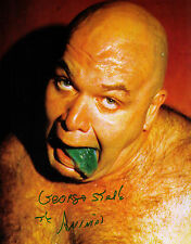 George The Animal Steel Steele signed auto photo 8 x by 10 WWWF WWF WWE NWA WCW