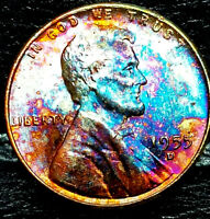 """1955 D Lincoln Wheat Penny Cent- """"Beautiful Toning"""" SUPERB GEM HIGH GRADE #00"""