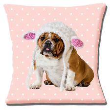 "Cute English Bulldog 16""x16"" 40cm Cushion Cover Knitted Hat Pink/White Polka Dot"