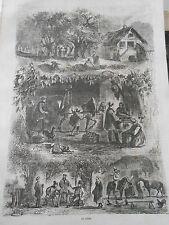 Gravure 1860 - Le Cidre Ceuillette fabrication