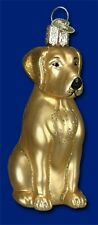 Yellow Labrador Retriever Old World Christmas Glass Goldie Dog Ornament 12386