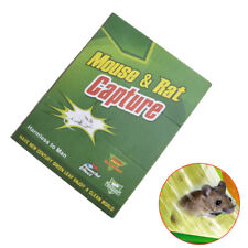 Adhesive Glue Trap Mouse Sticky Board Rodent For Mice Mousetrap Pest Control