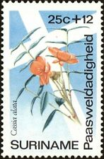 SURINAME -1974- Easter Charities Flower - CANDLESTICK SENNA - Semi-Postal-#B206