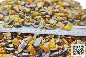 Moorbernstein, Naturbernstein  Stücke von 5-20mm getrommelt und leicht poliert