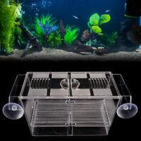 Fish Breeding Hatchery Young Fish Incubator Aquarium Breeder Isolation Box Z YK