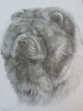 Chow Chow Print - Mike Sibley - Open Edition