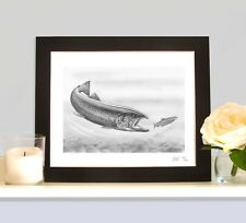 FEROX TROUT  Fly Fishing Game Art Print Drawing Picture MOUNTED Present Gift